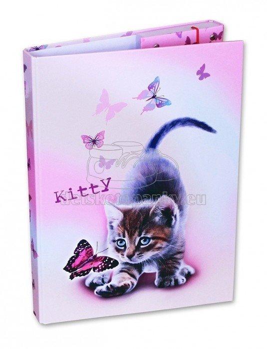 Školní box A4 Kitty D-3021-2.104